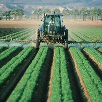 Pesticide sales drop 44% in 2019 after 2018 increase
